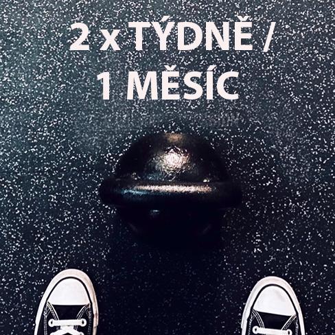 FUNKCNI-TRENINK-PRAHA-CVICENI-2X-TYDNE-1MESIC
